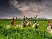 Update - Agricultural Reforms - September 2020